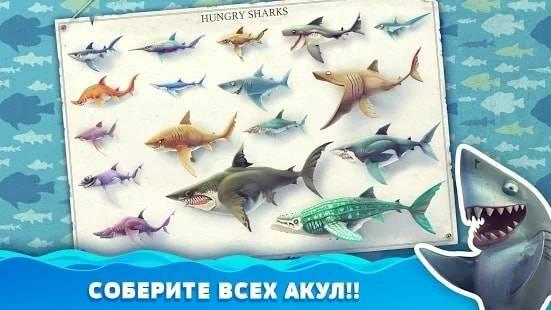 Hungry Shark World — Деньги и Алмазы для Android & IOS